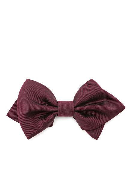 Bow Tie Luxury man
