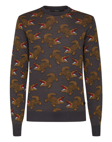 Merino wool Pullover Round Neck LS Jacquard Crocodile