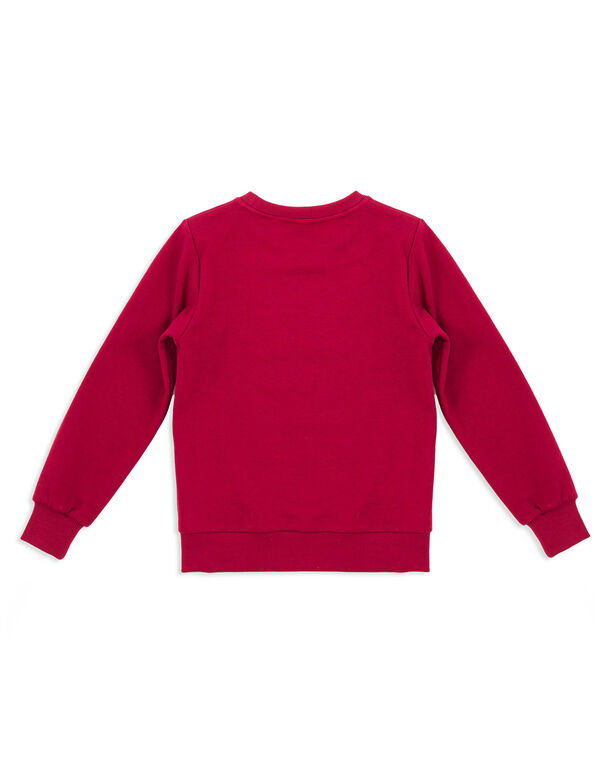 "Sweatshirt LS ""Ashpond"""